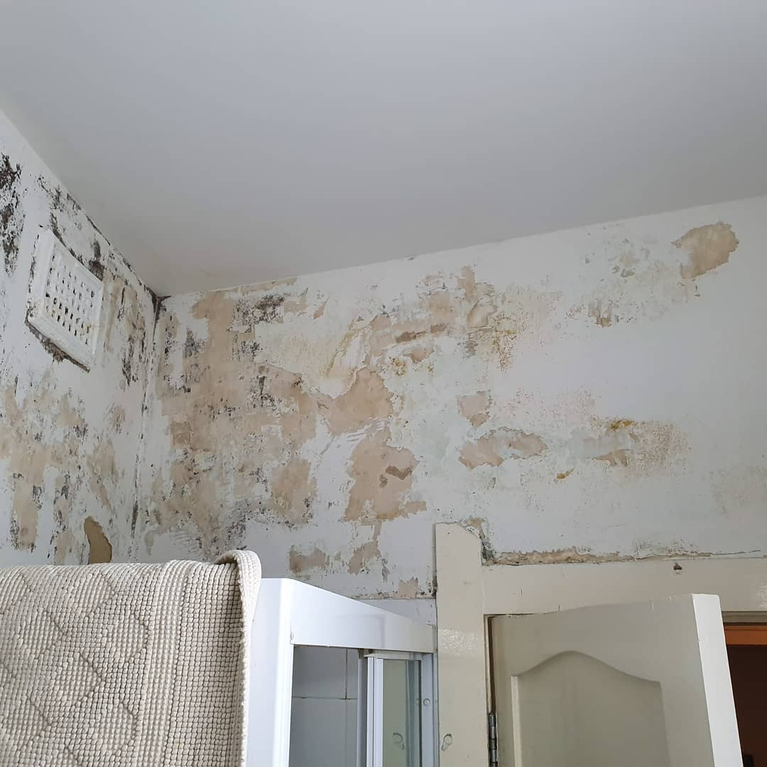 double-bay-interior-house-painters-project-before1