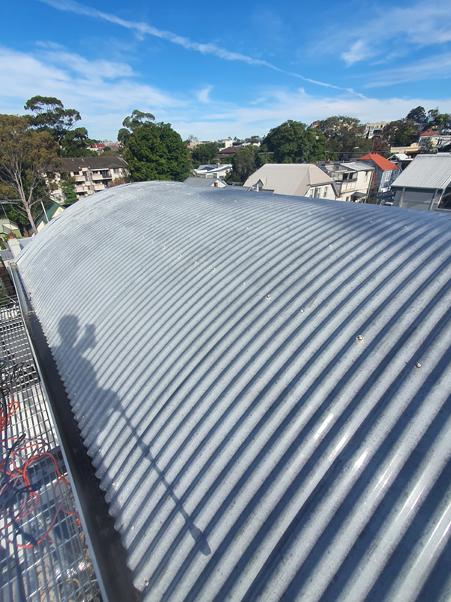 Roof-Painters-Birchgrove-Before1