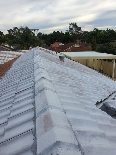 Roof-Painters-Holsworthy-Wattle-Grove-After1