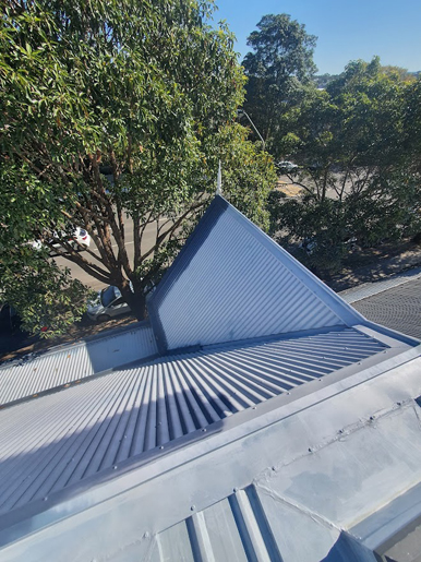 Roof-Painters-Annandale-Before4