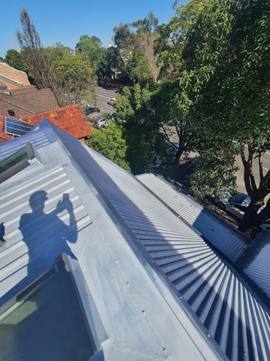 Roof-Painters-Annandale-Before5